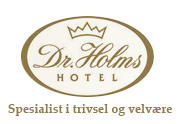 logo_drholms